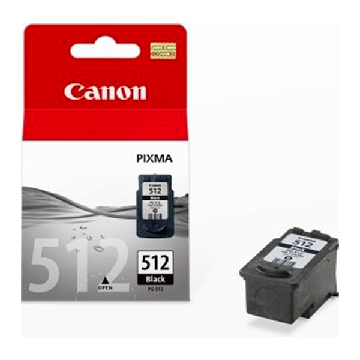 Original Ink Cartridge Canon CCICTO0233 2969B001 Black